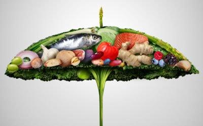Futter fürs Immunsystem: Die richtige Mischung machts