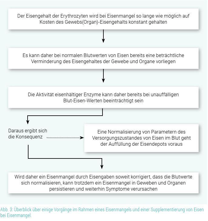 Abb.3 Eisenmangel